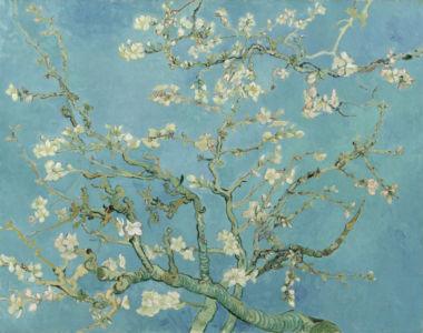 Vincent van Gogh, Amandelbloesem, Saint-Rémy-de-Provence, februari 1890, Vincent van Gogh Museum, Amsterdam